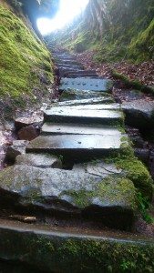 Steps to Finnich Glen